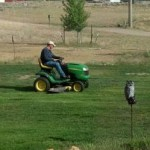 New Riding Lawn Mower
