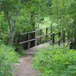 Bridge on the Trail