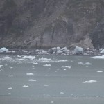 Icy Waters