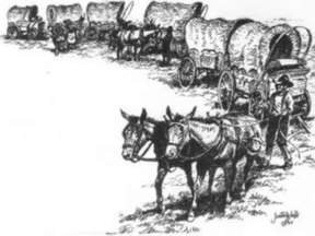 Wagon Train 2