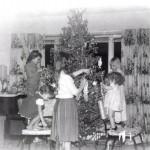 3 Decorating the tree
