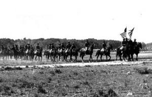 army-horses-mules_lastcav_01_700