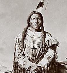 Young Crazy Horse |